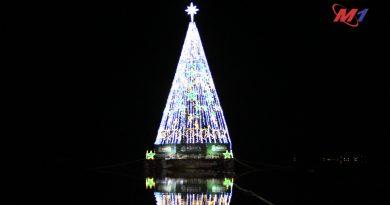 Árvore de Natal Flutuante