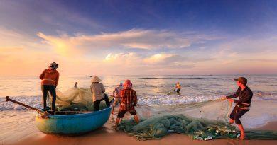 ordenamento pesqueiro