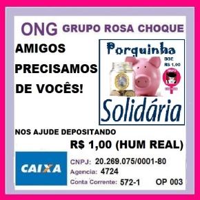 Rosa Choque Vaquinha
